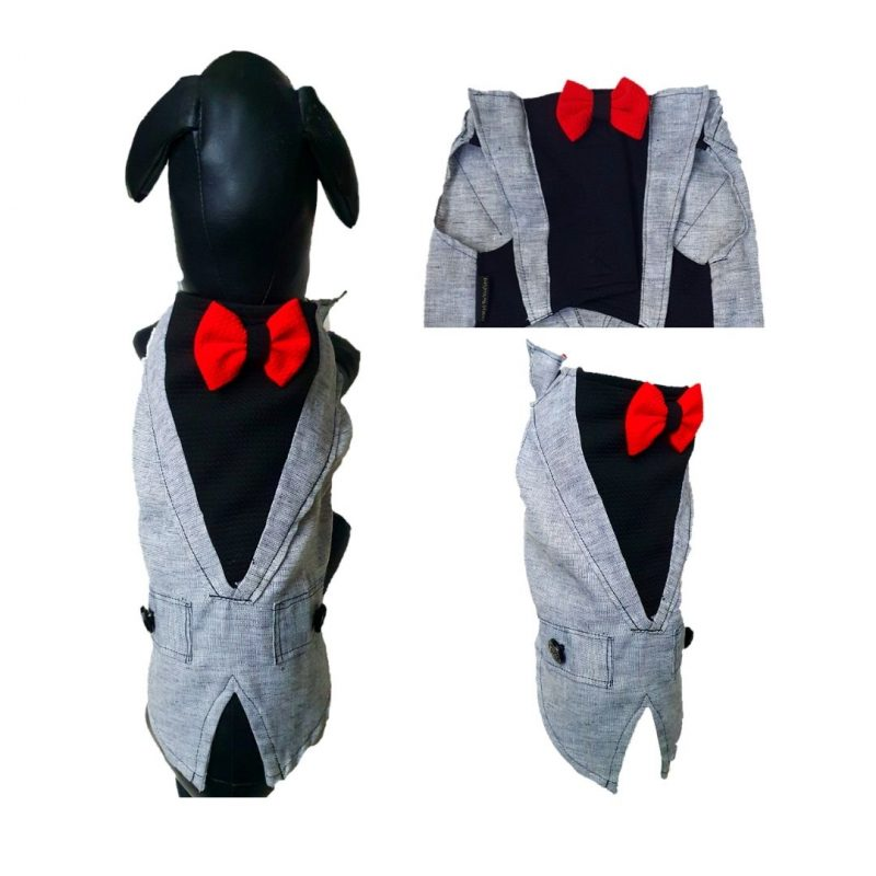 Grey Tuxedo with Red Bow at back and front