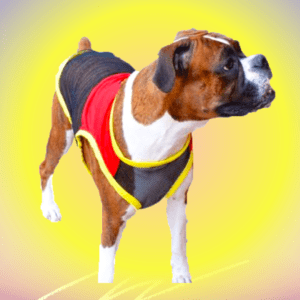 Black net T-Shirt, Tees with Red top and a Patch | Yellow Rib all around the dress for Dog, Cat and puppies