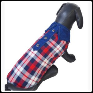 Blue and Red checks on White cotton based shirt with Denim collar with buttons