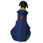 Blue Dual layered waterproof Raincoat with a hood