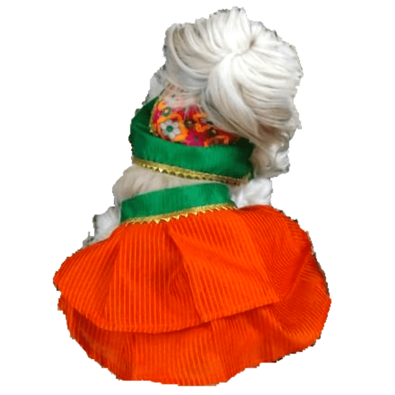 Orange and Green Chaniya Choli (Indian Dress) - Festive wear with Gold lace and multicoloured patch