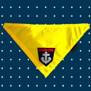 Yellow Waterproof Reversible Bandana