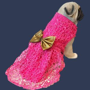 Hot Pink Spider Net Dress With Gold Bow   Gown For Dogs & Cats