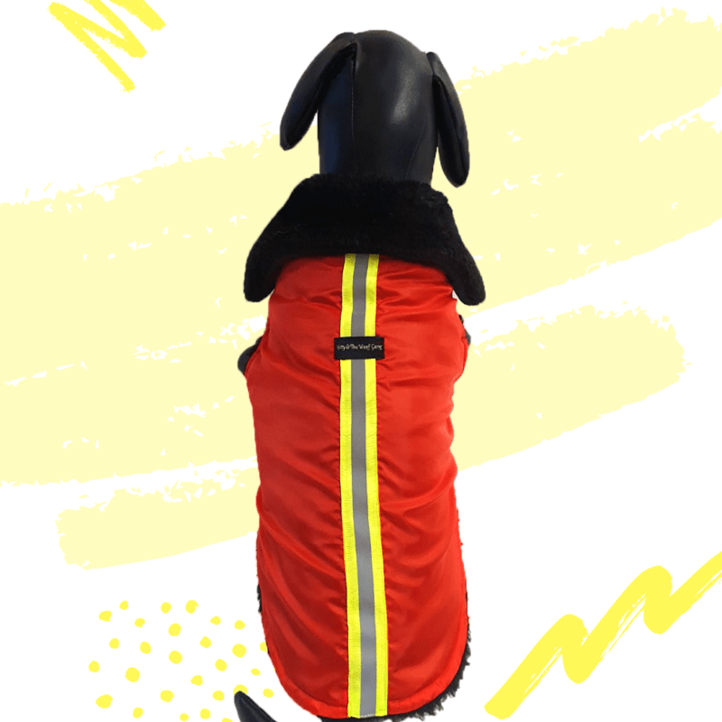Red Waterproof Jacket With Black Hood & Thick Soft Warm Lining   Dogs & Cats