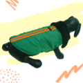 Green Waterproof Jacket With Black Hood & Thick Soft Warm Lining | Dogs & Cats