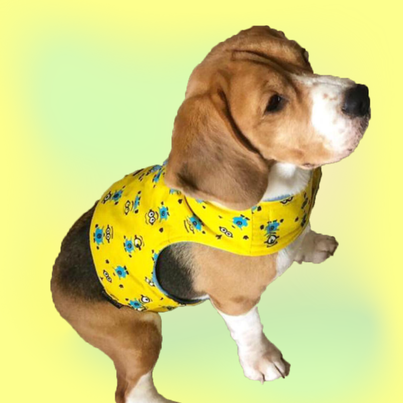 Yellow cute cartoon Body Harness For Dogs & Cats with a D - ring for Leash