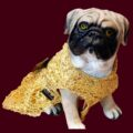 Gold Spider Net Dress With Gold Bow | Gown For Dogs & Cats