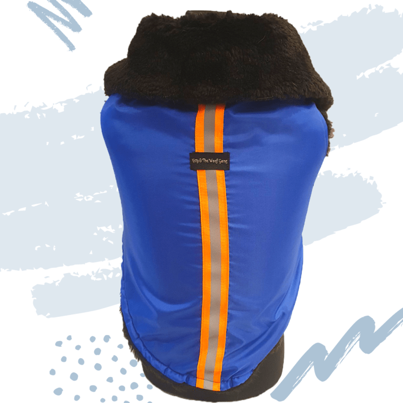 Blue Waterproof Jacket With Black Hood & Thick Soft Warm Lining | Dogs & Cats