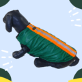 Waterproof Green Winter Jacket With Reflector & Black Soft & Warm Lining   Dogs & Cats