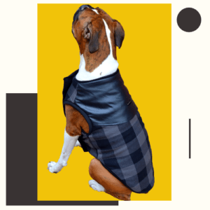 Grey Check Winter Jacket With Faux Leather Top & Grey Rib | Dogs & Cats
