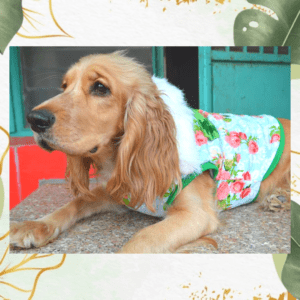Floral Winter Jacket With Green Rib & Bow | White Faux Fur Collar | Dogs & Cats