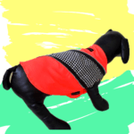 Neon Shirt With Black & White Check Patch With Metallic Zip | Dogs & Cats