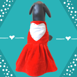 Red Love Dress With Big White Heart & Embellishments   Dress For Dogs & Cats