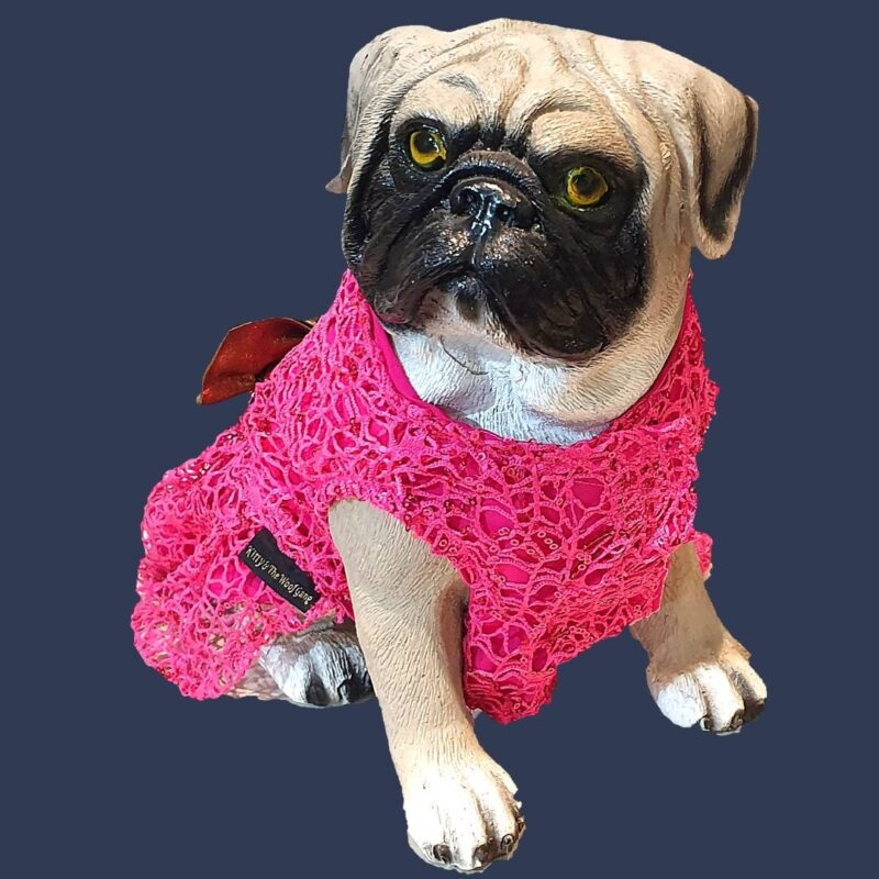 Hot Pink Spider Net Dress With Gold Bow | Gown For Dogs & Cats