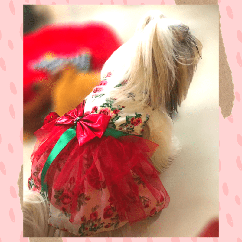 Floral Gown With Red Net Skirt & Red Bow With Green Tassel | Dog & Cat Dress