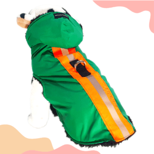 Green Waterproof Hoodie Jacket With Reflector & D For Leash   Winter Wear For Dogs & Cats
