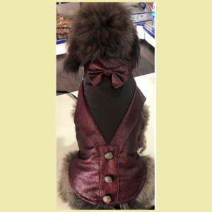 Designer Tuxedo With Bow & Buttons | For Dogs & Cats