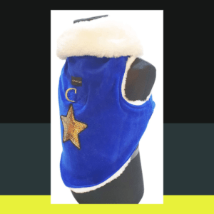 Blue Velvet Winter Jacket With Gold Sequence Star & D Hook For Leash | White Collar & White Soft Warm Lining | Dogs & Cats