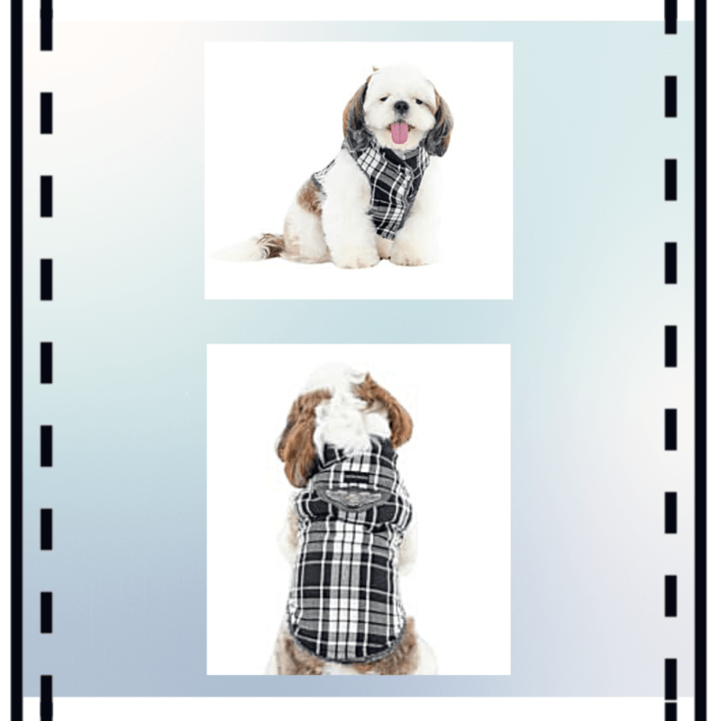 Grey White Check Winter Jacket | Black Rib & Patch | Dogs & Cats