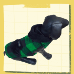 Green Black Check Winter Jacket With Black Hoodie & Pocket | Thick Black Warm Lining | Dogs & Cats