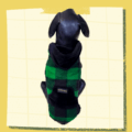 Green Black Check Winter Jacket With Black Hoodie & Pocket   Thick Black Warm Lining   Dogs & Cats